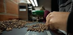 Get used to surging food prices: Extreme weather is here to stay - CNN Coffee Prices, Buy Coffee Beans, Real Coffee, Food To Make, Making Food, Extreme Weather, How To Dry Basil, News Articles