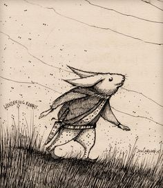 joncarling:  wandering rabbit