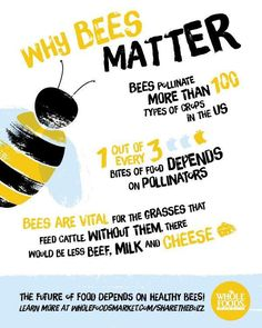 We've proudly partnered with Whole Foods Market The Xerces Society in an effort to save the bees! Save Our Earth, Save The Planet, Bee Friendly, Thinking Day, Science Fair, Forensic Science, Life Science, Whole Foods Market, Save The Bees