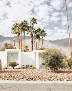 Sarah Sherman Samuel: Palm Springs Guide with Acura Palm Springs Houses, Palm Springs Style, Exterior Design, Interior And Exterior, Architecture Design, Beautiful Homes, Beautiful Places, Spring Aesthetic, Desert Homes