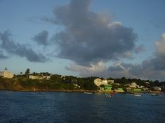 Vieques | Other Pictures of Vieques Island : from the ferry, at mosquito pier ...