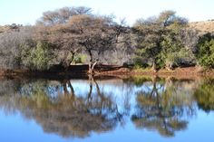 Reflections at bird hide...Mokala national Park, South Africa