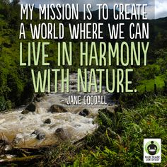 Inspirational words from Jane Goodall. At TMA, we try to be good stewards of the nature around us. For more information, check out www.tmalliance.org #Ecuador #Nature #Conservation