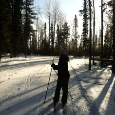 Cross country skiing - Waskesiu Lake, -been there Winter Fun, Winter Sports, Winter Snow, Colorado Winter, Skiing Colorado, Jackson Hole Skiing, Saskatchewan Canada, Cross Country Skiing, Snow Skiing