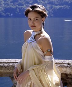 Image from http://yeeeah.com/wp-content/uploads/2012/12/padme-amidaa-lake-dress-1-e1354815437524.jpg.