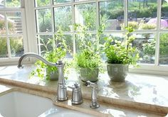 would love a ledge like this under my kitchen window.