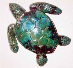 pictures of turtle art | Wall Art 1B- Living in Water