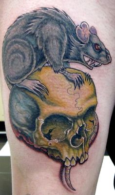 rat and skull by Trent Edwards -  Drew this tattoo up for the piercer at the shop, All in one sitting rats and skulls are always fun tattoo subject