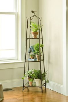 Incredible Tiered Plant Stand Design Bring Freshness for Home Interior: Glass Window Design Ideas Combine With Iron Tiered Plant Stand And Wooden Flooring Plus White Wall Paint For Home Interior Decoration Indoor Planters, Indoor Garden, Home And Garden, Outdoor Plants, Balcony Planters, Indoor Flower Pots, Best Indoor Plants, Lawn And Garden, Plantas Indoor