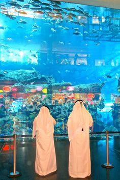 Aquarium in the Dubai Mall - www.dubaitravel.co - on my jollies travel