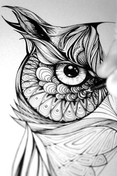 Image result for owl dream catcher drawing
