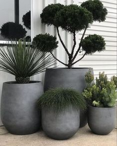 House Plants Decor, Patio Plants, Indoor Plants, Plants On Balcony, Outdoor Pots And Planters, Outdoor Flower Pots, Pots For Plants, Balcony Planters, Balcony Flowers