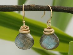 Jamie Joseph's faceted teardrop Labradorite earrings! Perfection. xo, Ped Shoes.