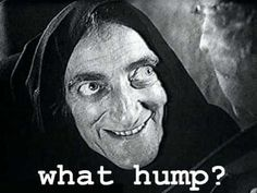 Image result for what hump young frankenstein