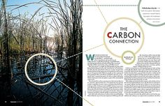 the carbon connection    Opening two-page spread for an article on – deep breath – carbon sequestration (Google it). Typefaces from the Futura family were used in the headline.    Jeopopolis™