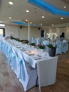 Light blue satin sash on white covers at Mshed.