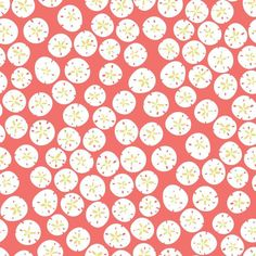 York Wallcoverings KB8555 Sand Dollars Wallpaper Coral / White / Mustard Yellow Home Decor Wallpaper Wallpaper