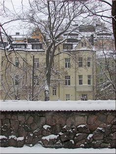 The snow came today, again  Eira Helsinki, Finland Photo Aili Alaiso
