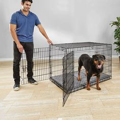(This is an affiliate pin) You & Me Ultra Tough 2-Door Folding Dog Crate Wild Bird Food, Wild Birds, Online Pet Supplies, Dog Supplies, Gentle Leader, Pet Cage, Dog Leash, Dog Accessories