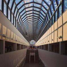 #Arktikum #rovaniemi #finland #museum - www.arktikum.fi Finland, Louvre, Museum, History, Building, Places, Instagram Posts, Travel, Historia