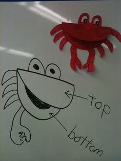 Who's feelin' crabby?!