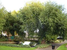 Clapton Pond, Lower Clapton, Hackney (London)