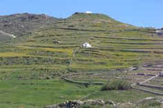 terraced fields....once upon a time, they provided survival