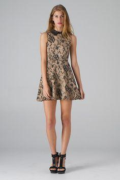 Lace Print Skater Dress