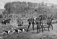 Hunting. Victorian drawing of huntsmen fording a river. A man in a top hat and a woman riding sidesaddle have just crossed, accompanied by three foxhounds; more hounds and hunstsmen are still in the water behind them. Download high quality jpeg for just £5. Perfect for framing, logos, letterheads, and greetings cards.