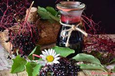 e Elderberry Growing, Elderberry Benefits, Elderberry Juice, Elderberry Recipes, Elderberry Supplement, Flu Remedies, Snoring Remedies, Herbal Remedies, Health Remedies