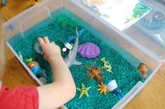 Exploring with the Octonauts
