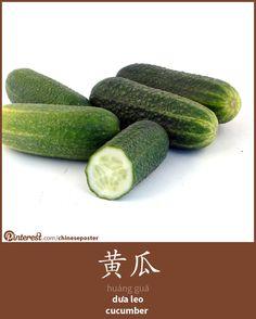 黄瓜 - Huángguā - dưa leo - cucumber