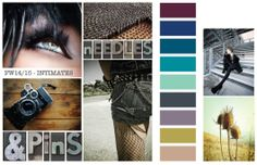 Fall Winter 2014-015 Color Trends from CSI