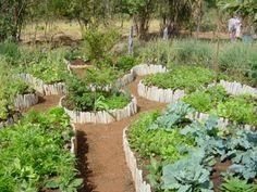 Resultado de imagem para horta espiral permacultura