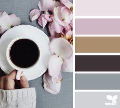 color serve More