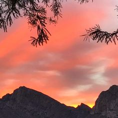 The Beauty of Dawn in Oro Valley | Arizona | Photo via Instagram by @littledoreen