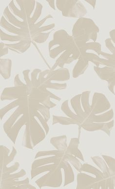 Basic Monstera Leaf Removable Fabric Wallpaper - Peel and Stick! — SAMANTHA SANTANA