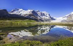 Athabasca glacier, Columbia Icefields, Canada. June 2015