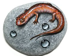 Stone Painting Red Salamander and Water Drops! Hand painted on a flat stone with acrylics and finished with gloss varnish protection