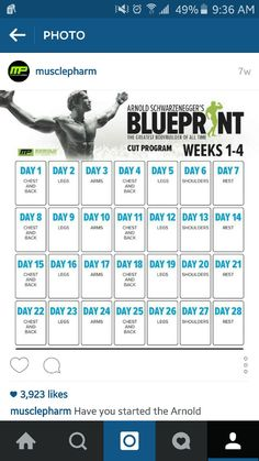 Arnold blueprint my workout plan for the next 8 weeks killer workout fitness gymnastics work outs rogue fitness malvernweather Gallery