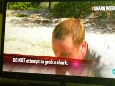 Advice I try to follow everyday: DO NOT attempt to grab a shark. #SharkWeek