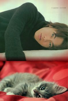 Takeru and Cats lover