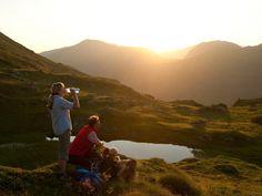 Sonnenaufgangswanderung am Falkert mit Wildbeobachtung. Am Gipfel eines Berges zu stehen, wenn die Sonne die umliegende Bergwelt in ein golden schimmerndes Licht taucht, das lässt jeden Wanderer innehalten. Lassen auch Sie sich bei diesem Erlebnis die Seele wärmen und beobachten Sie mit etwas Glück auch die heimische Tierwelt.