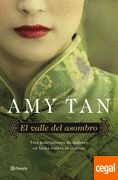 Images search results for amy tan el valle del asombro epub from Hefei Infinity Technology Co. I Love Books, Good Books, Books To Read, My Books, Amy Tan, The Book Thief, Best Novels, Romance, World Of Books