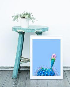 Cactus Print Mexican Decor Printable Art Blue Cactus Print | Etsy Cactus Wall Art, Cactus Print, Printing Services, Online Printing, Printable Wall Art, Flower Art, Different Colors, Contemporary Art, Mexican