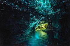 Les grottes de Waitomo en Nouvelle-Zélande ont été découvertes en 1887. Leur particularité, elles sont habitées par de petits insectes, des vers luisants qui transforment les parois en ciel étoilé. Magique !