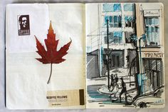 Journals full of sketches, ticket stubs, and dried leaves