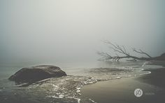 Ursprünglich sollten an diesem Morgen einige Landschaftsfotos entstehen, die die Ostseeküste bei Sonnenaufgang zeigen. Die Sonne wurde jedoch durch den dichten Nebel verhüllt.