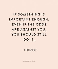 """If something is important enough, even if the odds are against you, you should still do it."" - Elon Musk"