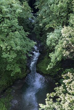 Risletenschlucht: schöne Wanderung am Vierwaldstättersee - Wandertipp Entlebucher, Water, Outdoor, Waterfall, Road Trip Destinations, Travel Destinations, Vacations, Traveling, Nice Asses